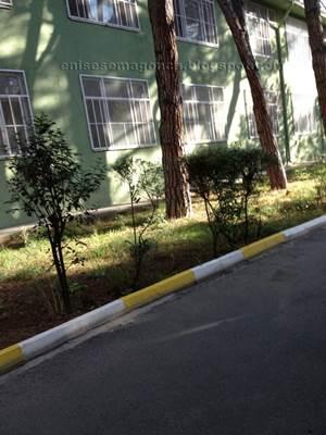 Erenköy Ruh Ve Sinir Hastalıkları Eğitim Araştırma Hastanesi Resmi
