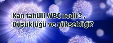 Kan tahlili WBC nedir? düşüklüğü ve yüksekliği?